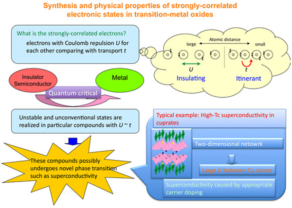 Synthesis and physical properties of strongly-correlated electronic states in transition-metal oxides
